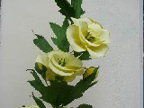 Kwiaty z bibuły - Malwa