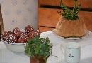Wielkanoc na Kujawach