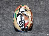 Pisanki edukacyjne Ptaki, jajo kurze, ręcznie malowana (6)